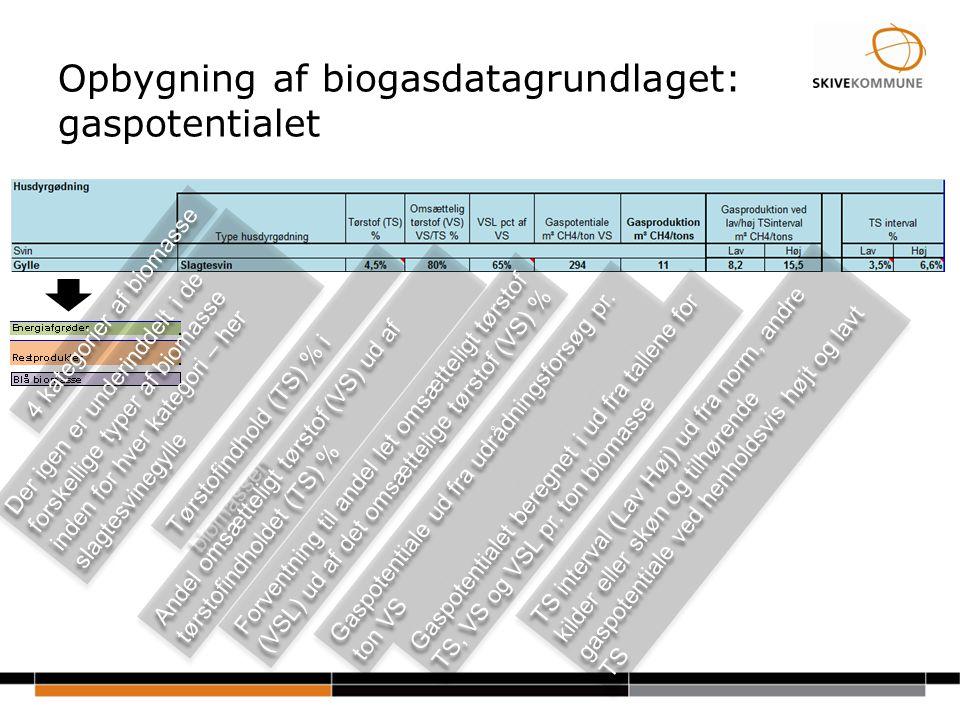 Opbygning af biogasdatagrundlaget: gaspotentialet