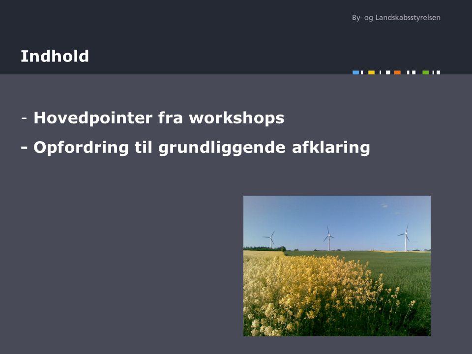 Hovedpointer fra workshops - Opfordring til grundliggende afklaring