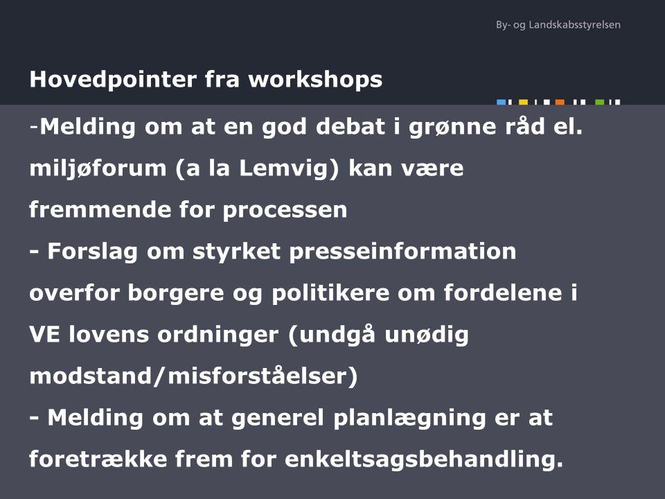 Hovedpointer fra workshops