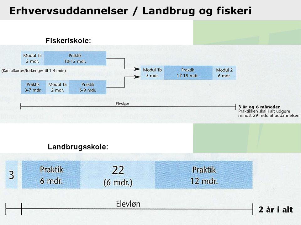 Erhvervsuddannelser / Landbrug og fiskeri