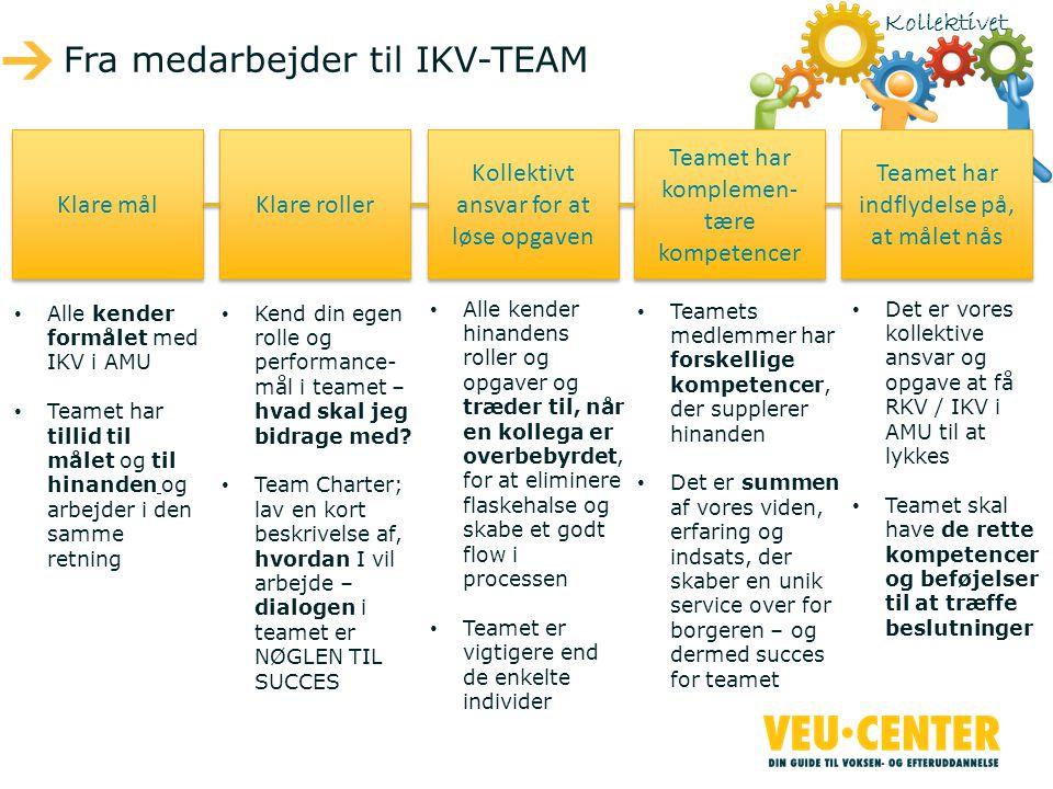 Fra medarbejder til IKV-TEAM
