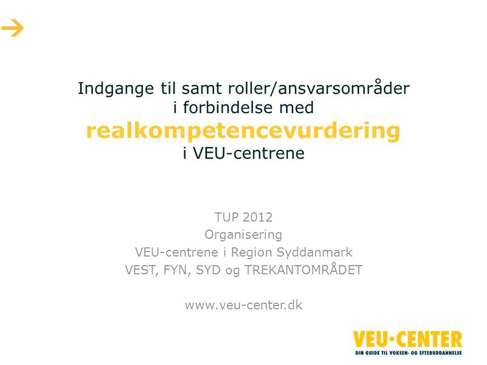 Indgange til samt roller/ansvarsområder i forbindelse med realkompetencevurdering i VEU-centrene