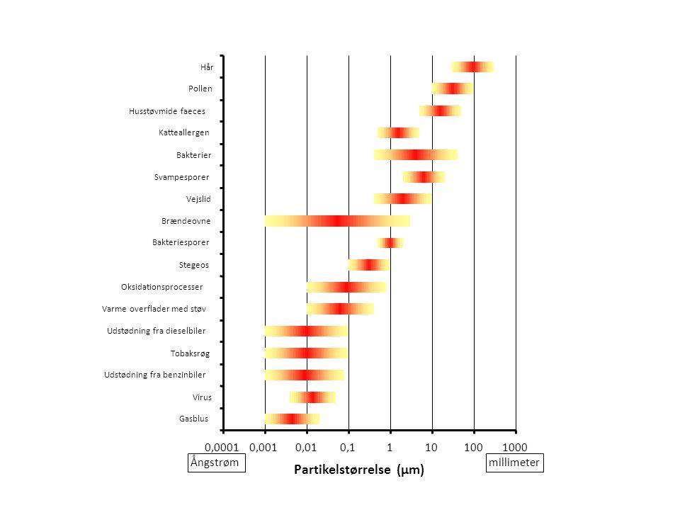 Partikelstørrelse (µm)