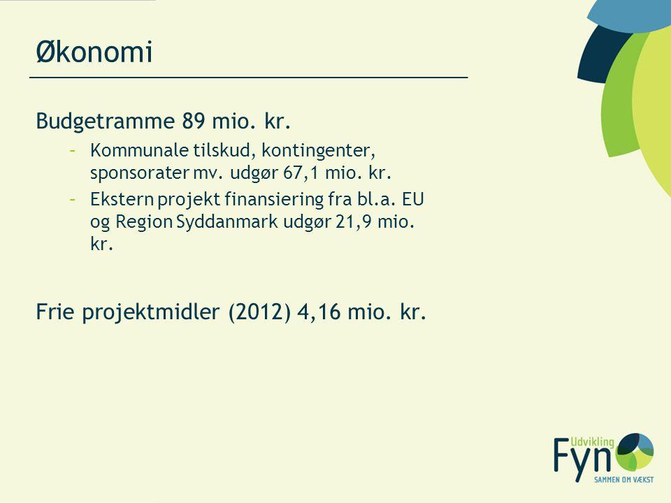 Økonomi Budgetramme 89 mio. kr.