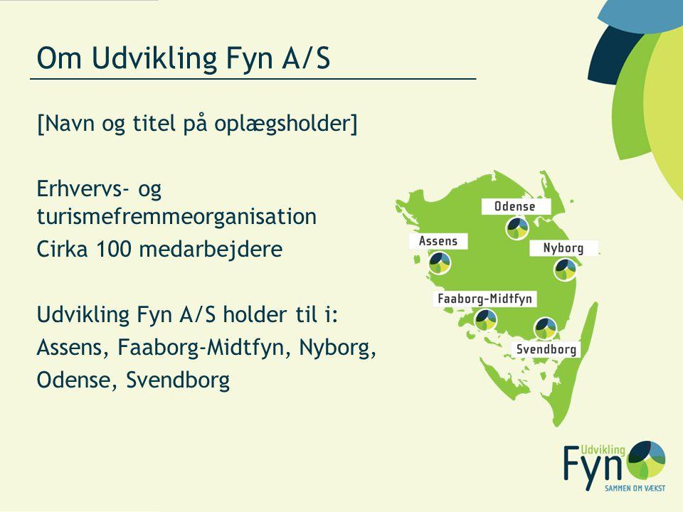 Om Udvikling Fyn A/S