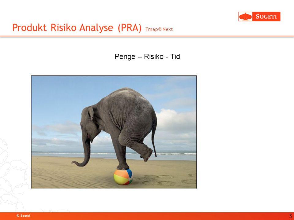 Produkt Risiko Analyse (PRA) Tmap® Next