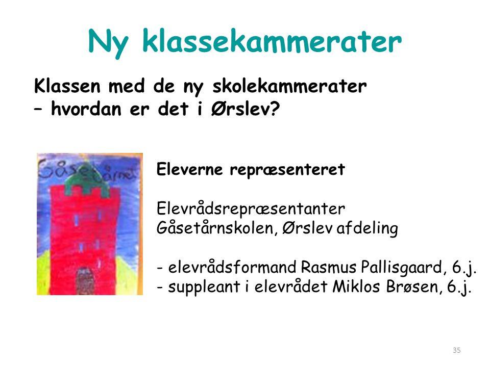Ny klassekammerater Klassen med de ny skolekammerater – hvordan er det i Ørslev Eleverne repræsenteret.
