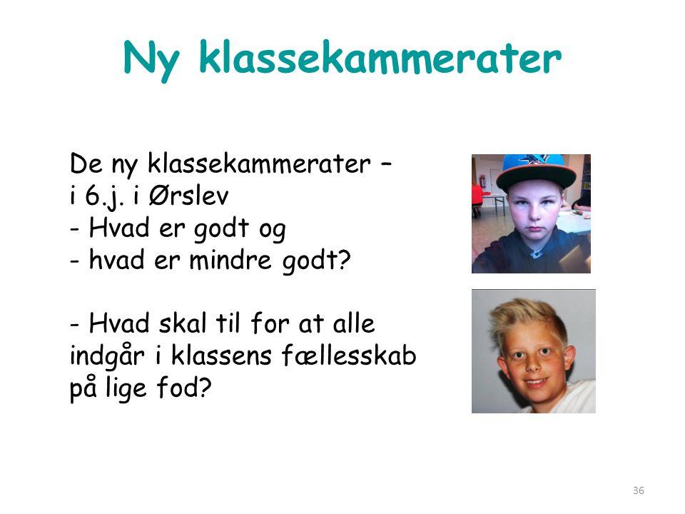 Ny klassekammerater De ny klassekammerater – i 6.j. i Ørslev - Hvad er godt og - hvad er mindre godt