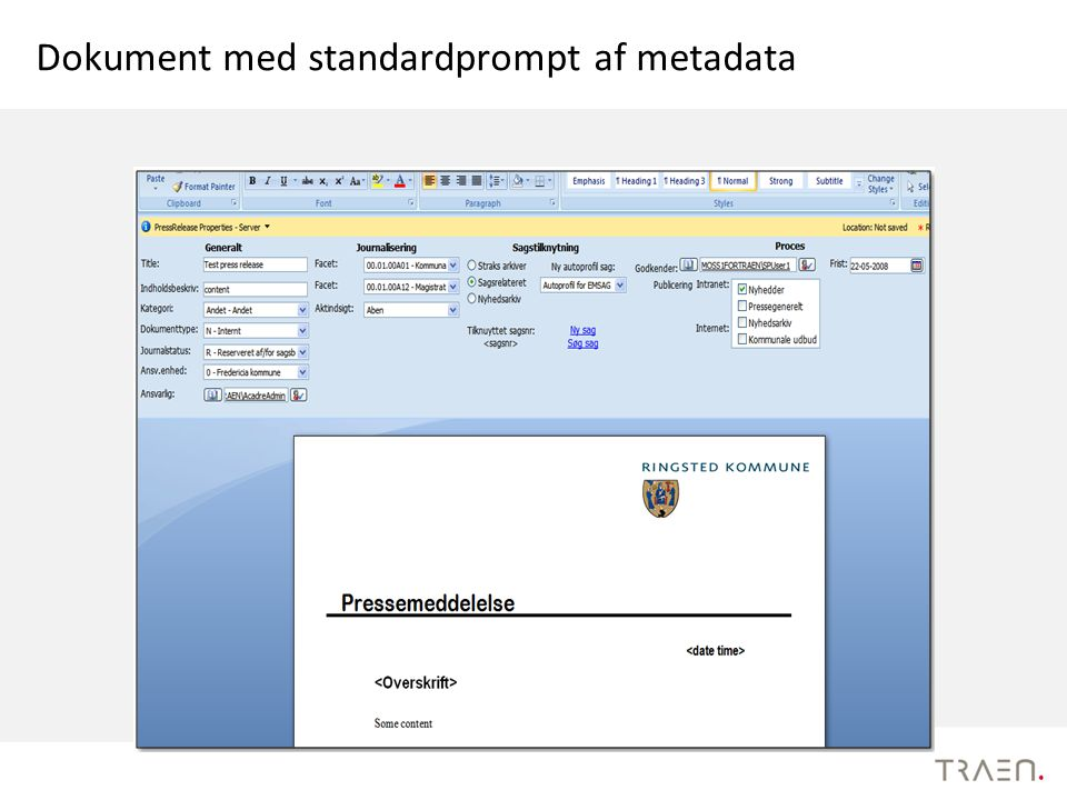 Dokument med standardprompt af metadata