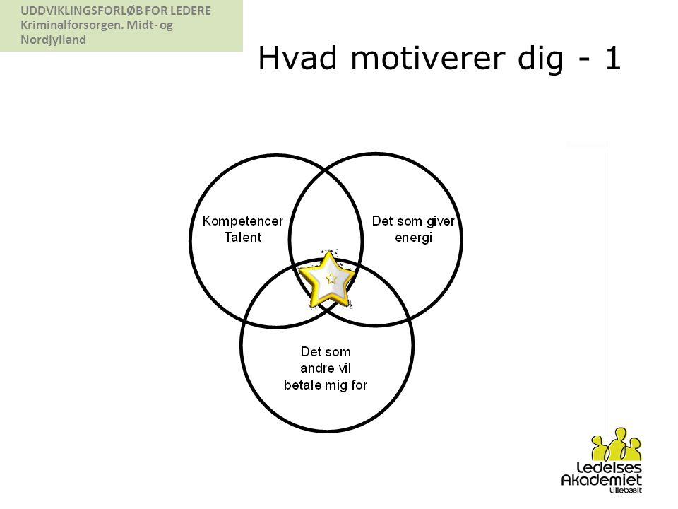 Hvad motiverer dig - 1 Her er en model som kan synliggøre egen personlige motivationsfaktorer: Kompetencer/talent: det som jeg er god til.