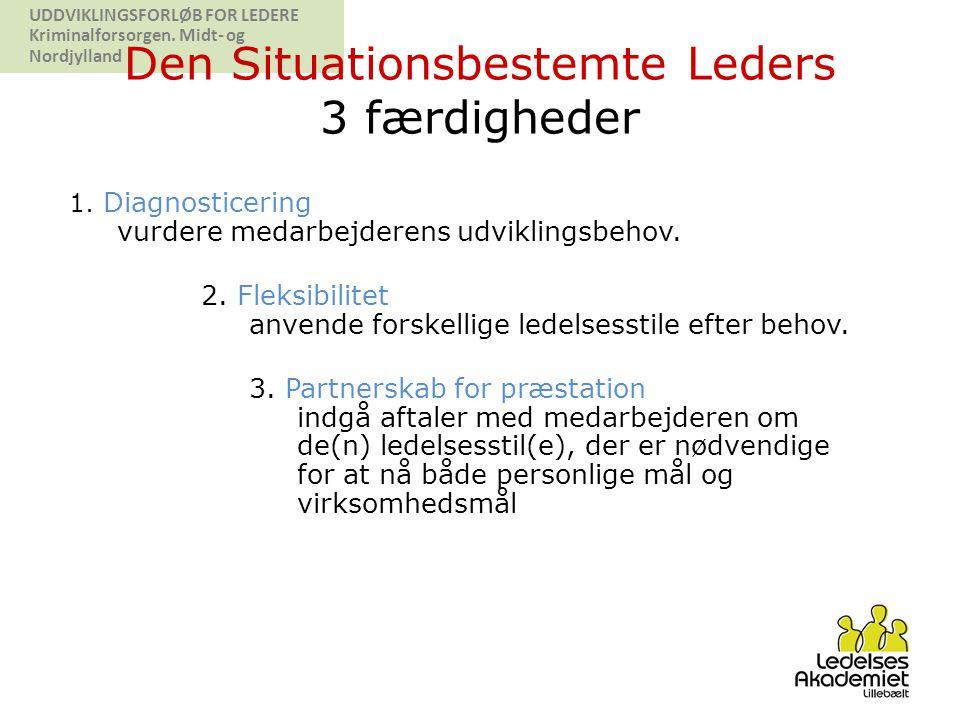 Den Situationsbestemte Leders 3 færdigheder