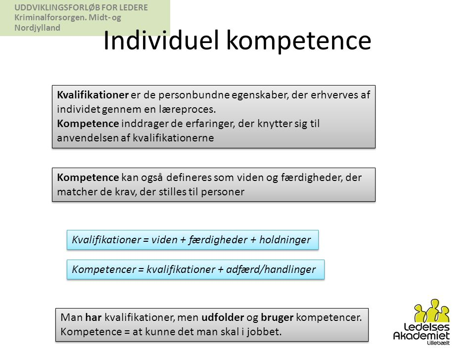 Individuel kompetence