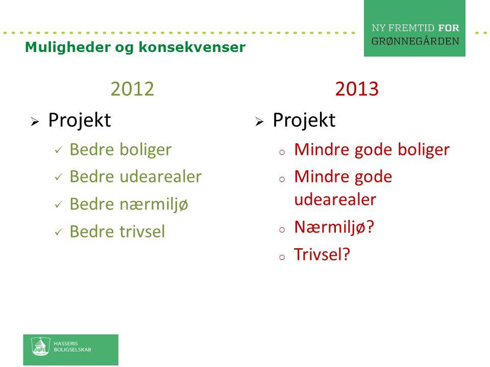 2012 Projekt 2013 Projekt Bedre boliger Bedre udearealer