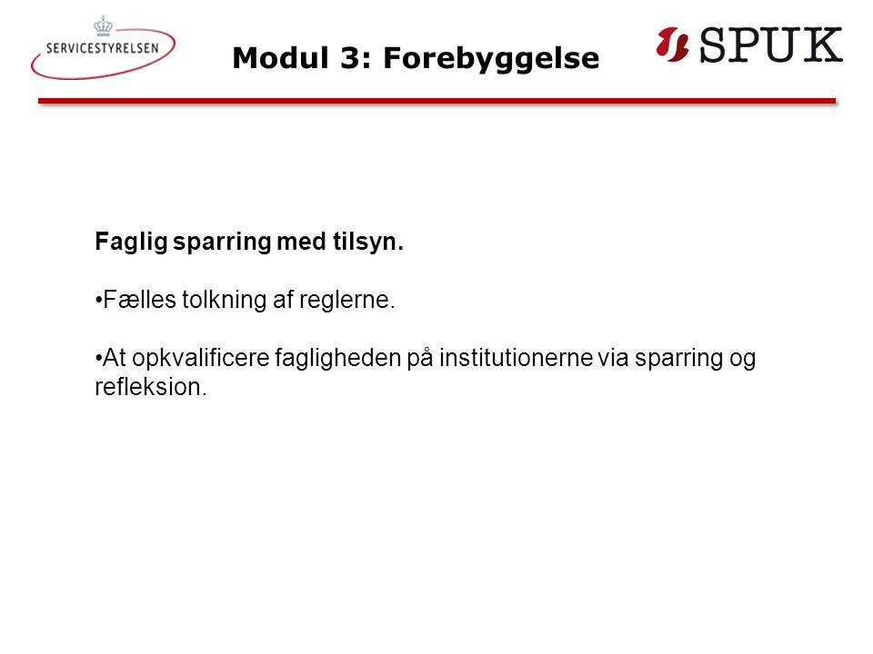 Modul 3: Forebyggelse Faglig sparring med tilsyn.