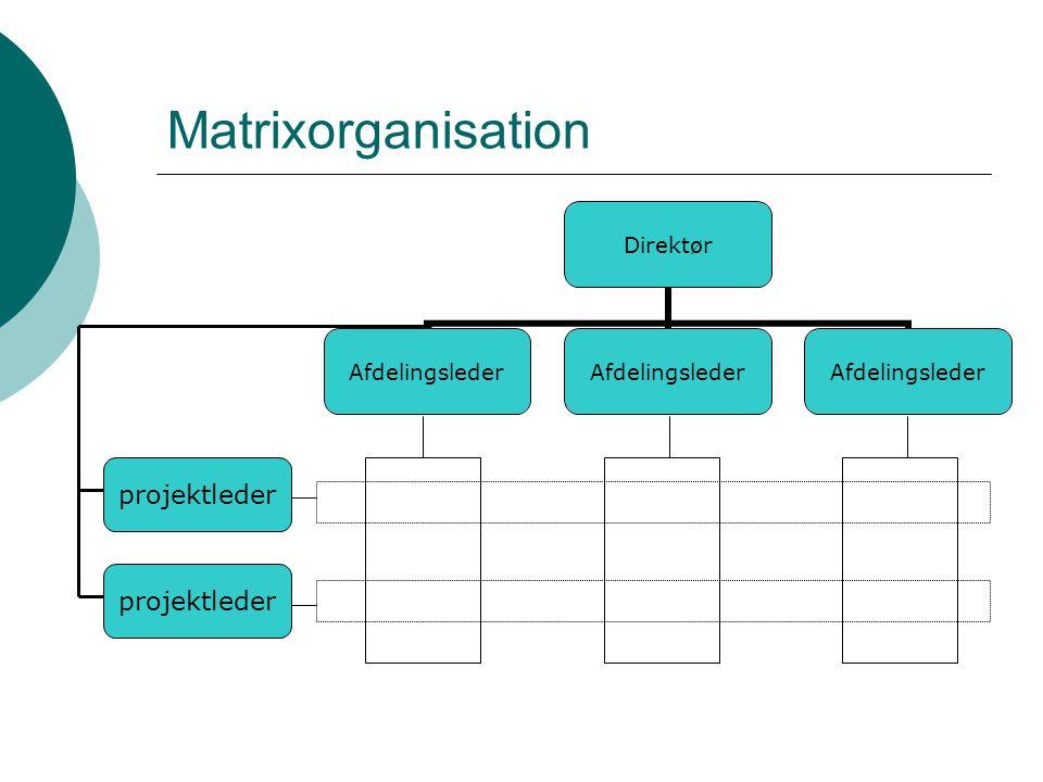 Matrixorganisation projektleder projektleder