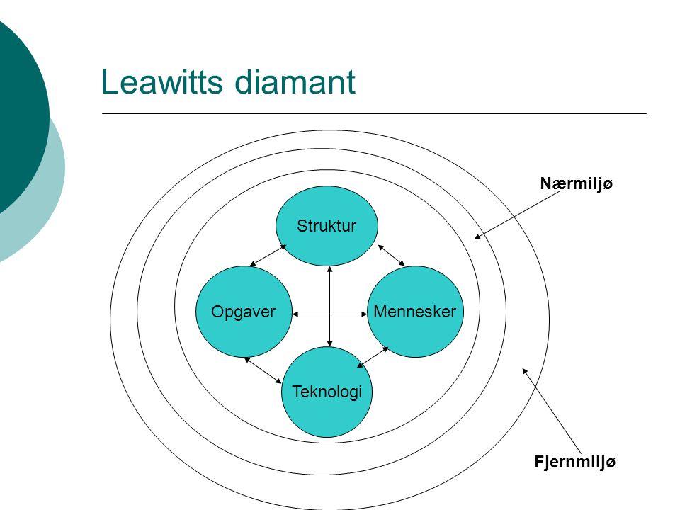 Leawitts diamant Nærmiljø Struktur Opgaver Mennesker Teknologi