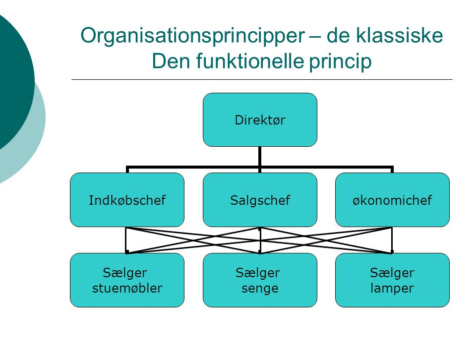 Organisationsprincipper – de klassiske Den funktionelle princip