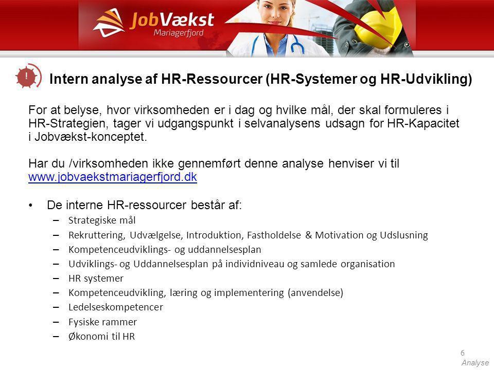 Intern analyse af HR-Ressourcer (HR-Systemer og HR-Udvikling)