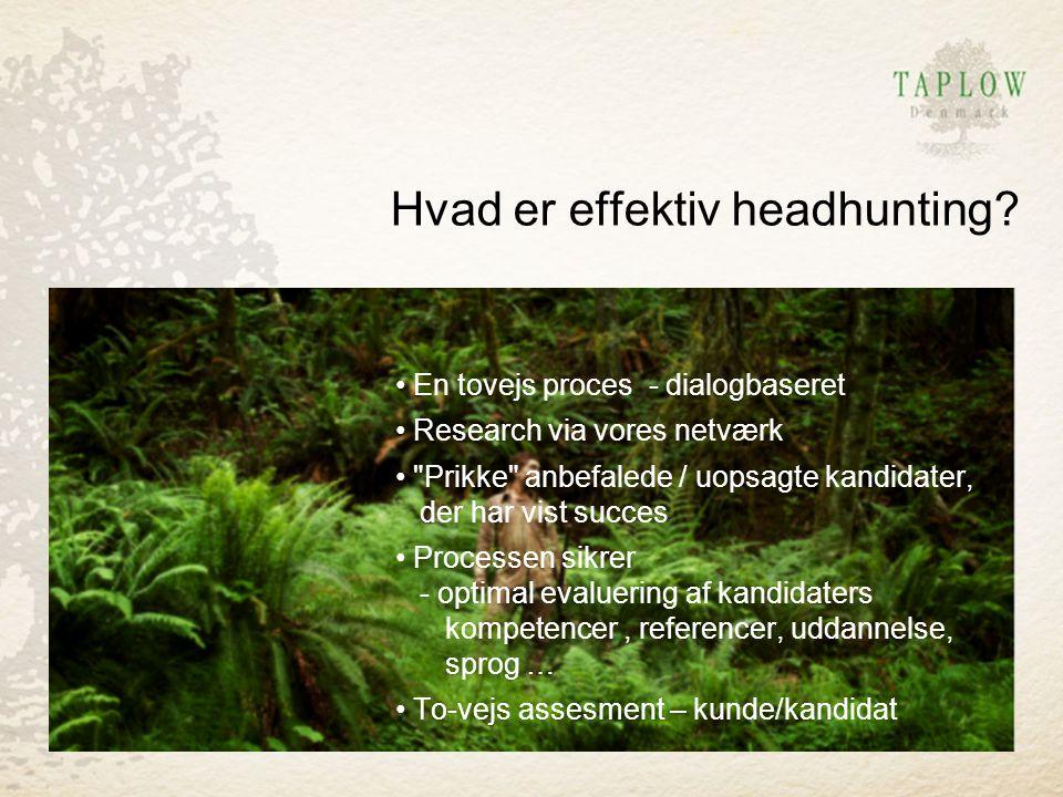 Hvad er effektiv headhunting
