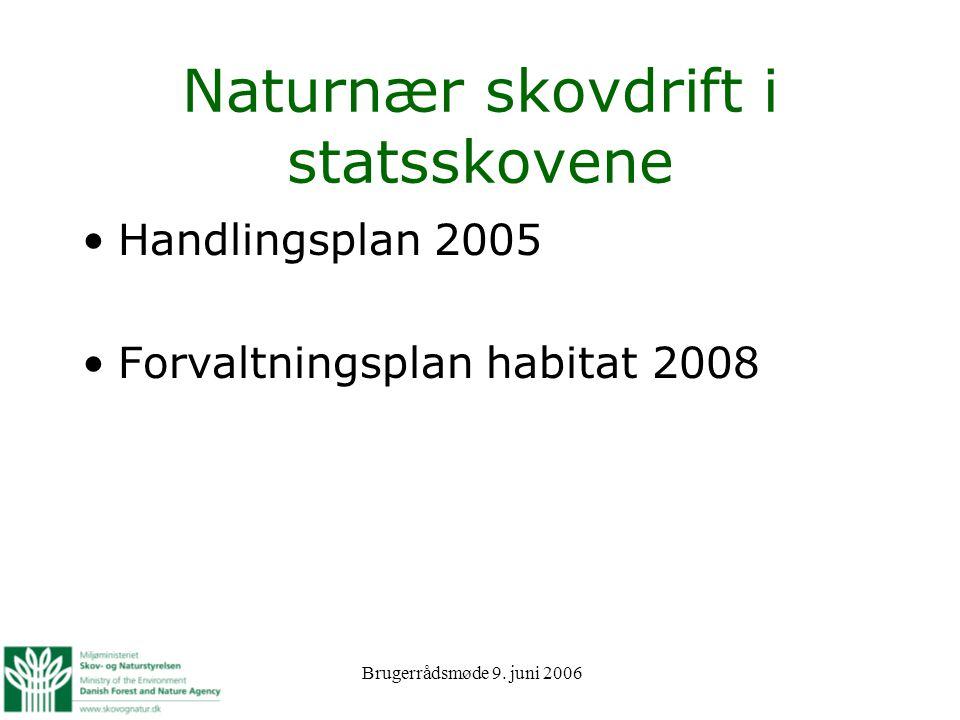 Naturnær skovdrift i statsskovene