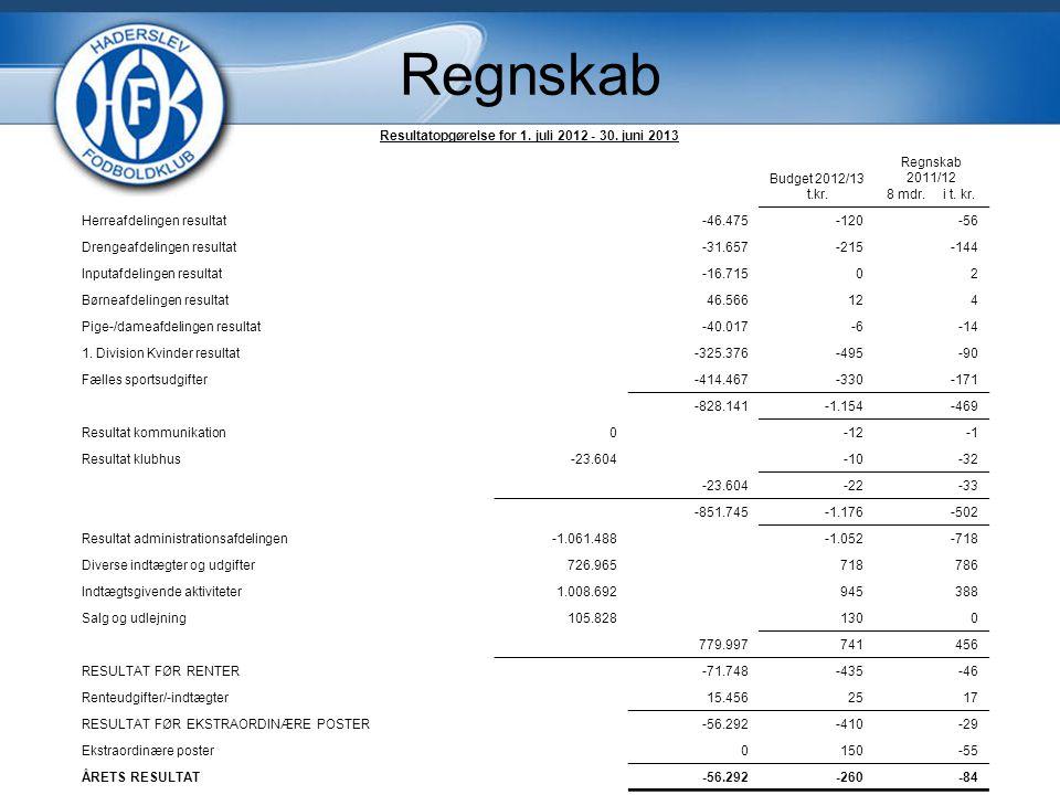 Resultatopgørelse for 1. juli 2012 - 30. juni 2013