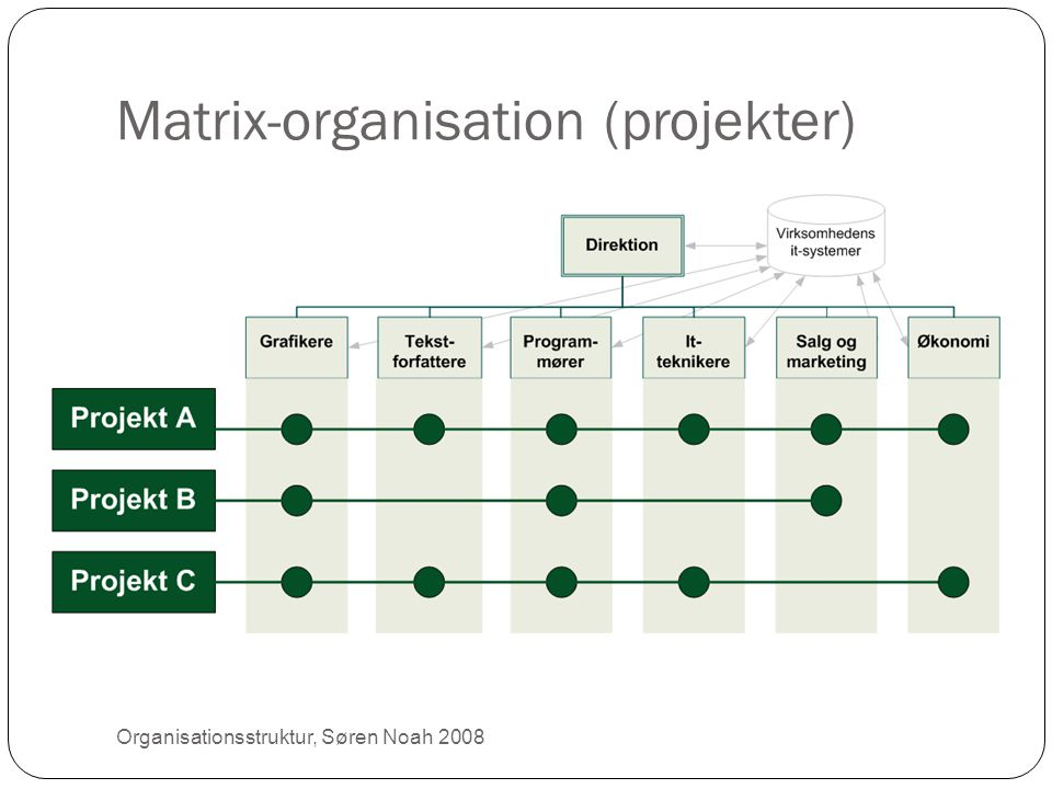 Matrix-organisation (projekter)