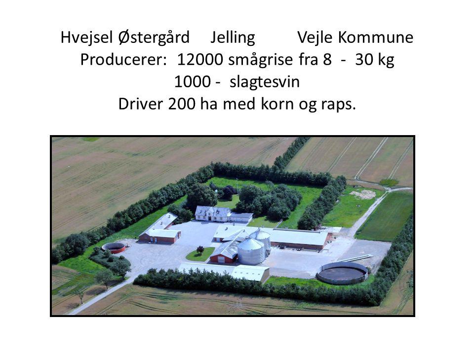 Hvejsel Østergård. Jelling