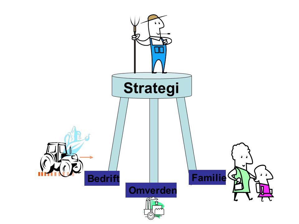 Strategi Bedrift Familie Omverden Mission og vision nu på plads