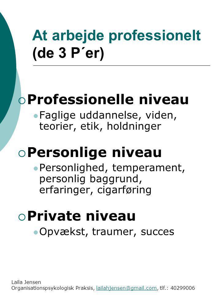 At arbejde professionelt (de 3 P´er)