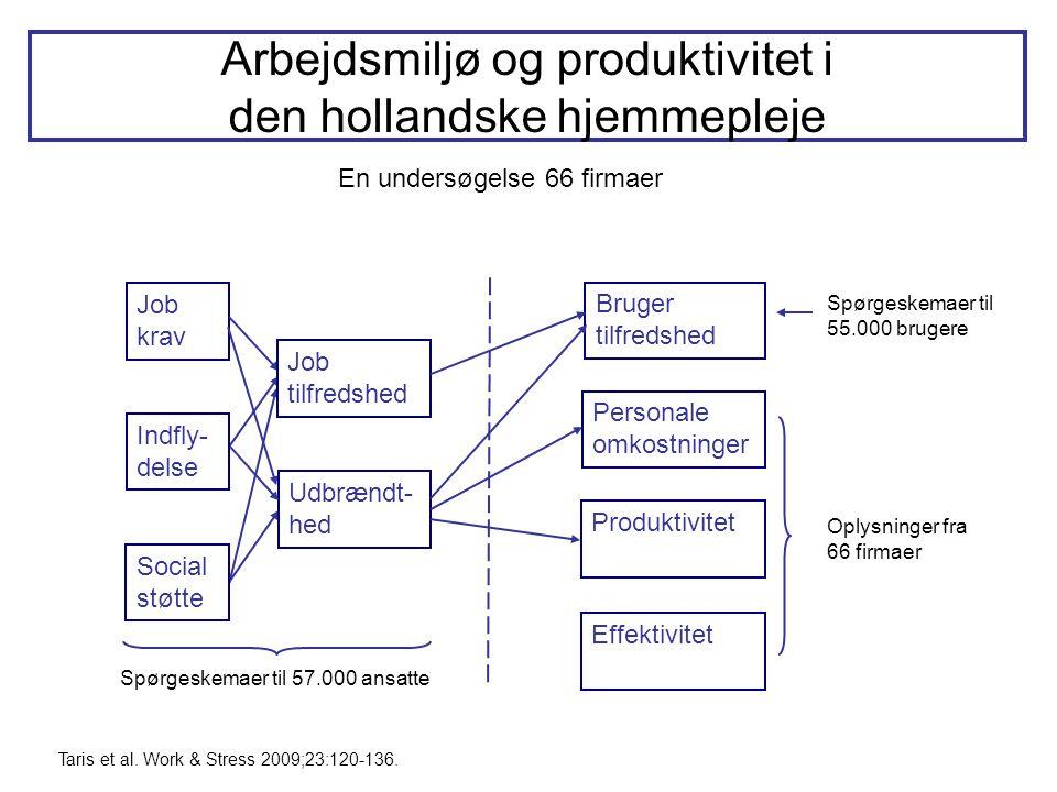 Arbejdsmiljø og produktivitet i den hollandske hjemmepleje