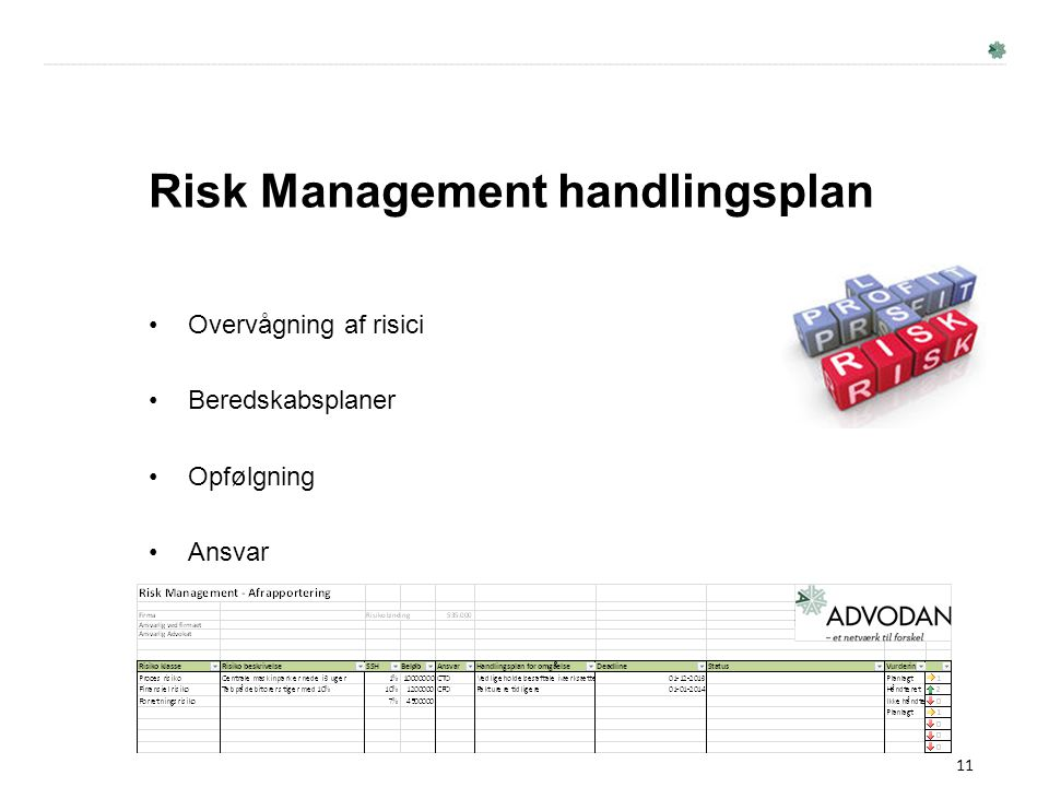 Risk Management handlingsplan
