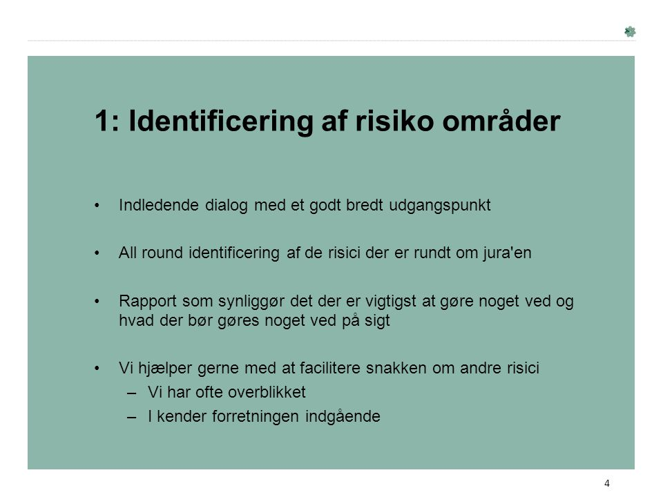 1: Identificering af risiko områder
