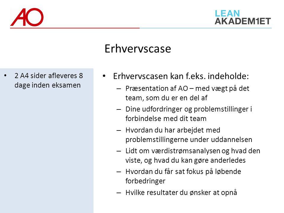 Erhvervscase Erhvervscasen kan f.eks. indeholde:
