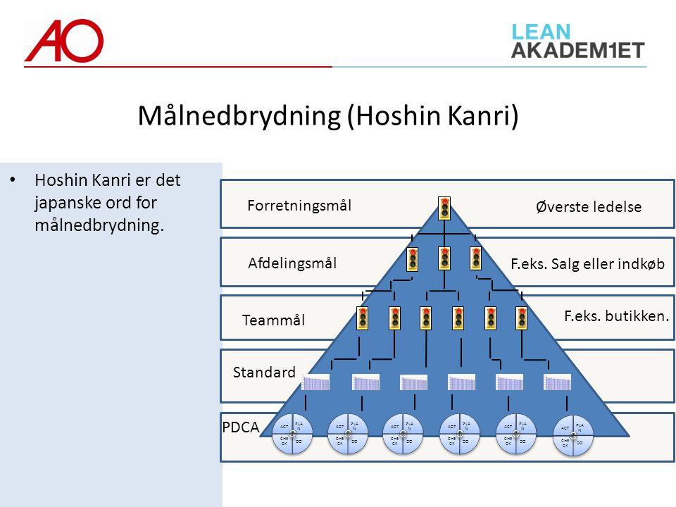 Målnedbrydning (Hoshin Kanri)
