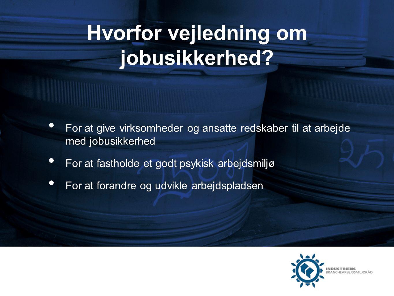 Hvorfor vejledning om jobusikkerhed