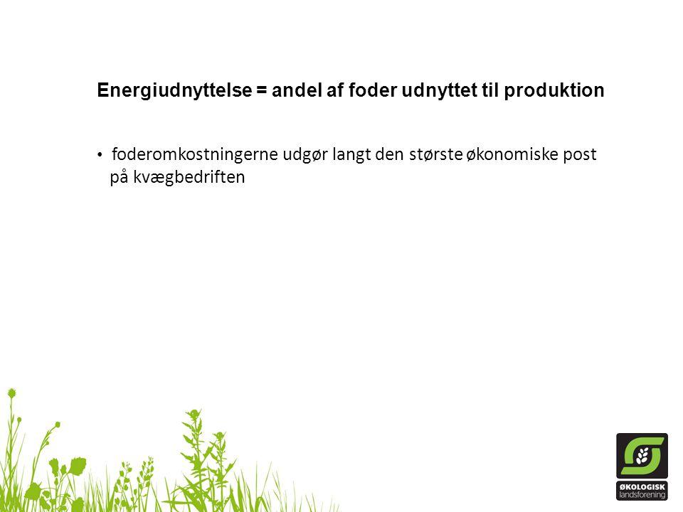 Energiudnyttelse = andel af foder udnyttet til produktion