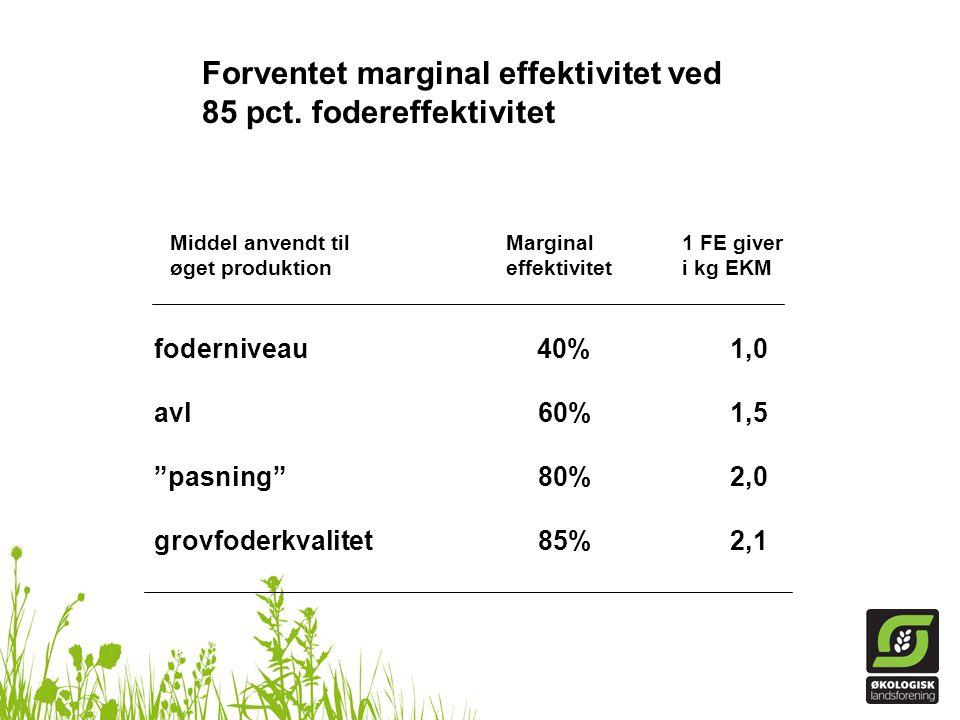 Forventet marginal effektivitet ved 85 pct. fodereffektivitet
