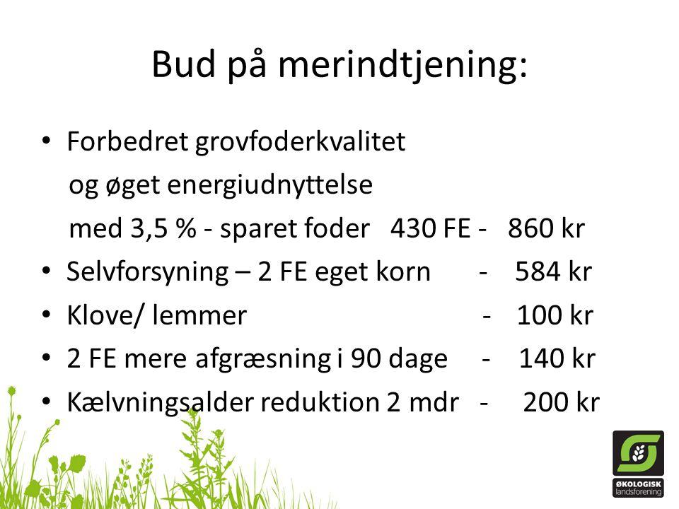 Bud på merindtjening: Forbedret grovfoderkvalitet
