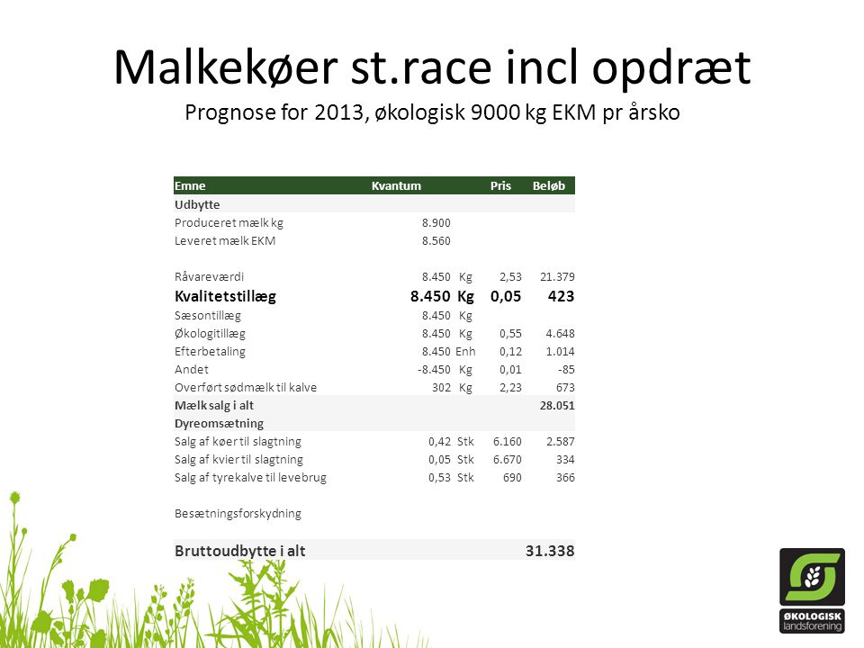 Malkekøer st.race incl opdræt Prognose for 2013, økologisk 9000 kg EKM pr årsko