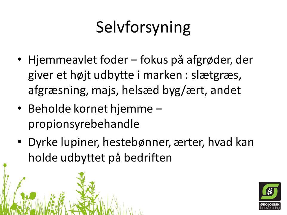 Selvforsyning Hjemmeavlet foder – fokus på afgrøder, der giver et højt udbytte i marken : slætgræs, afgræsning, majs, helsæd byg/ært, andet.