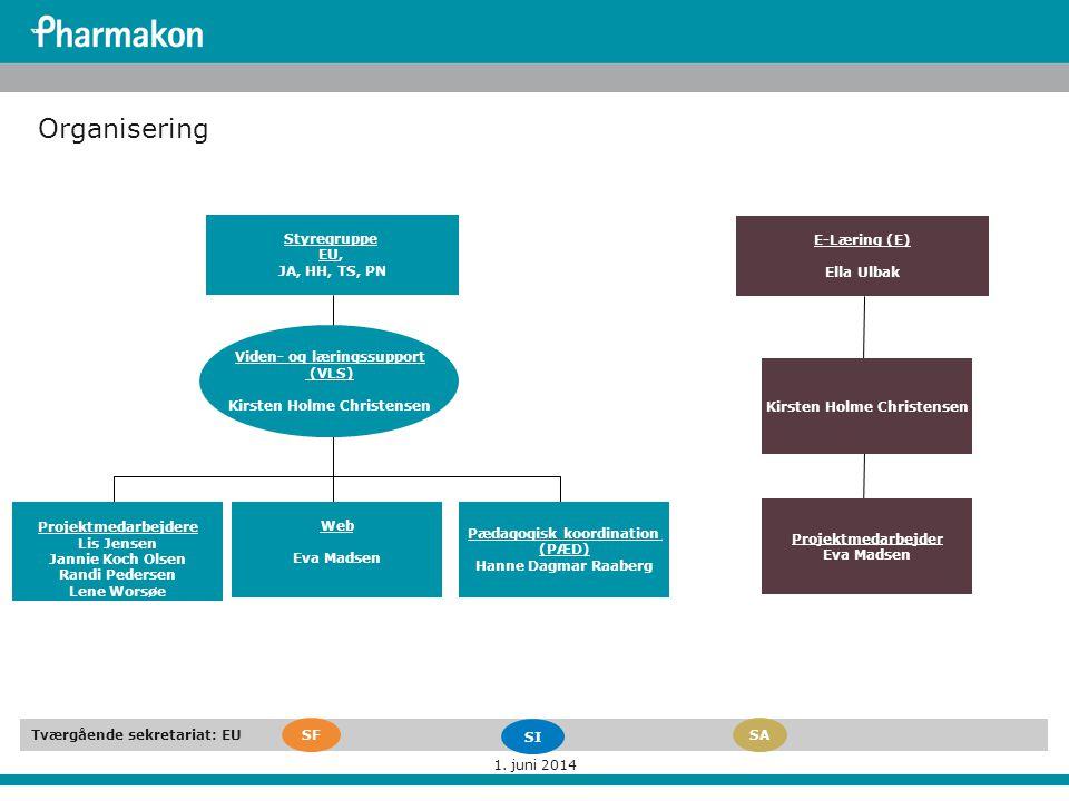Organisering Styregruppe EU, JA, HH, TS, PN E-Læring (E) Ella Ulbak