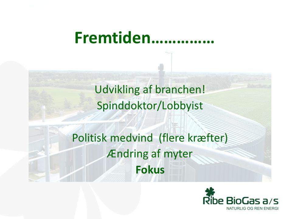 Fremtiden…………… Udvikling af branchen! Spinddoktor/Lobbyist