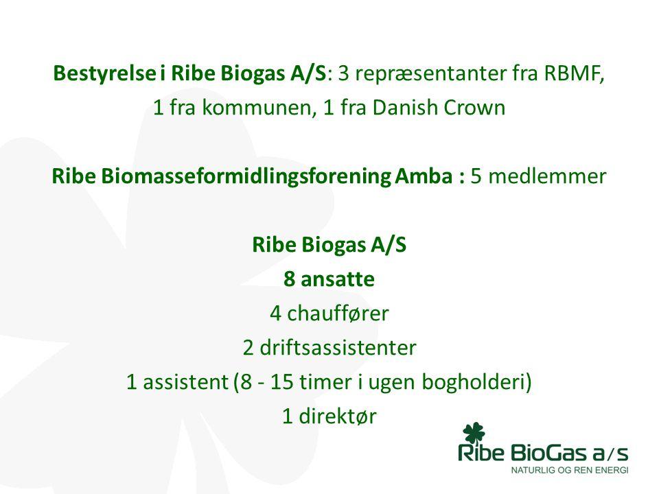 Ribe Biogas A/S 8 ansatte