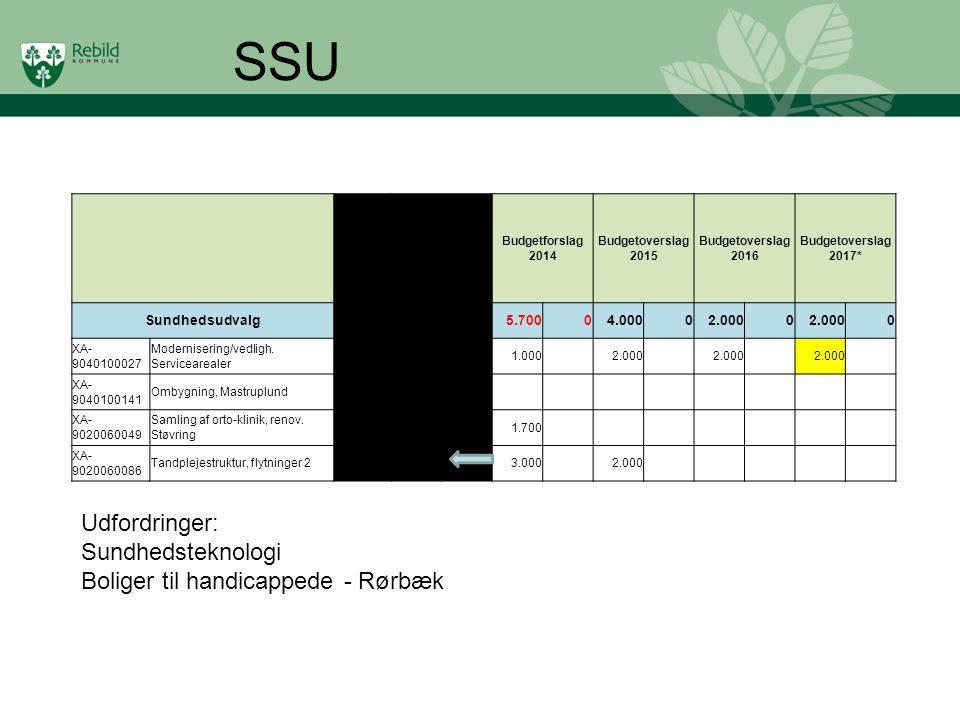 SSU Udfordringer: Sundhedsteknologi Boliger til handicappede - Rørbæk