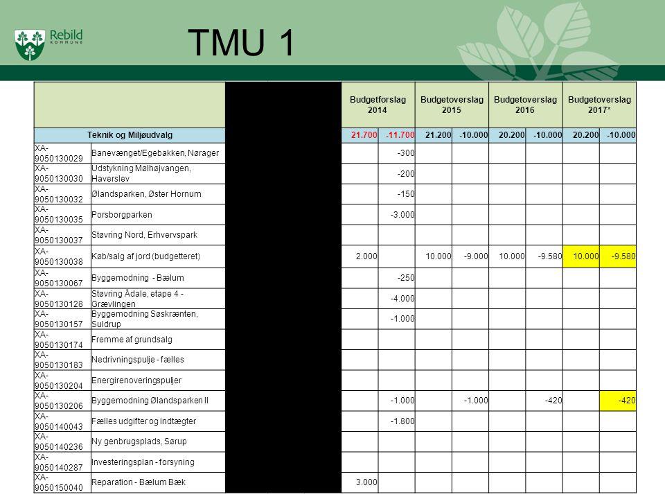 TMU 1 Overfrørt fra 2012 Opr. Budget 2013 Budgetforslag 2014