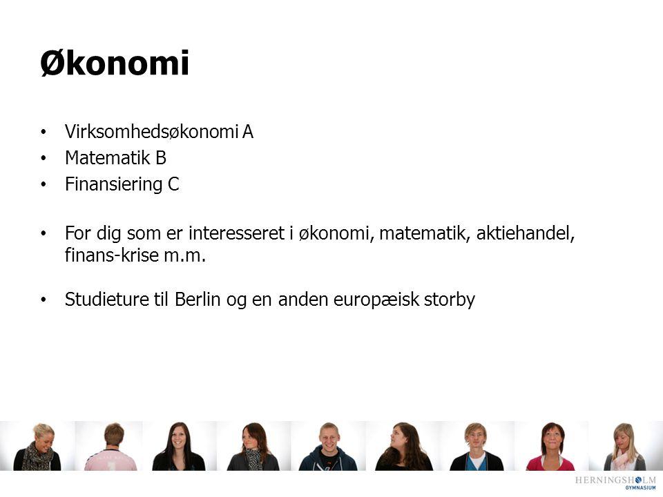 Økonomi Virksomhedsøkonomi A Matematik B Finansiering C