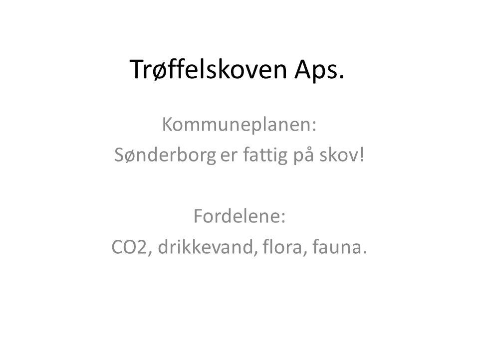 Trøffelskoven Aps. Kommuneplanen: Sønderborg er fattig på skov!