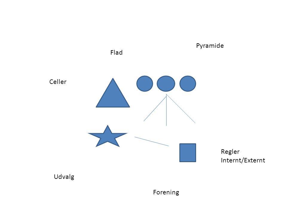 Pyramide Flad Celler Regler Internt/Externt Udvalg Forening