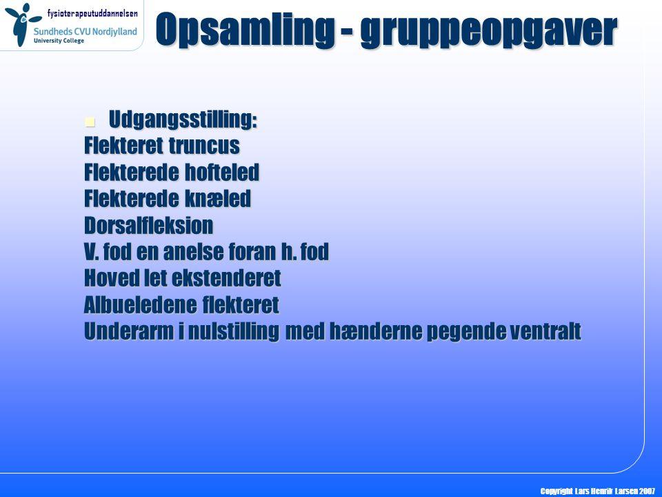 Opsamling - gruppeopgaver