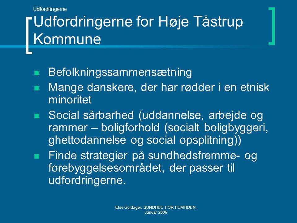 Udfordringerne Udfordringerne for Høje Tåstrup Kommune